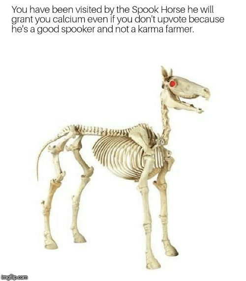 Spook Horse | image tagged in spooky | made w/ Imgflip meme maker