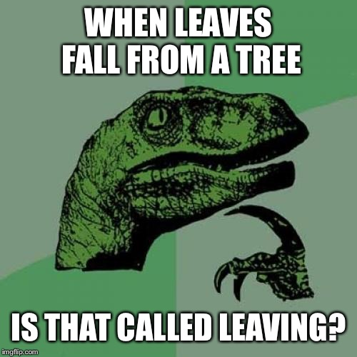 Another scientific term for trees shedding their leaves | WHEN LEAVES FALL FROM A TREE IS THAT CALLED LEAVING? | image tagged in memes,philosoraptor | made w/ Imgflip meme maker