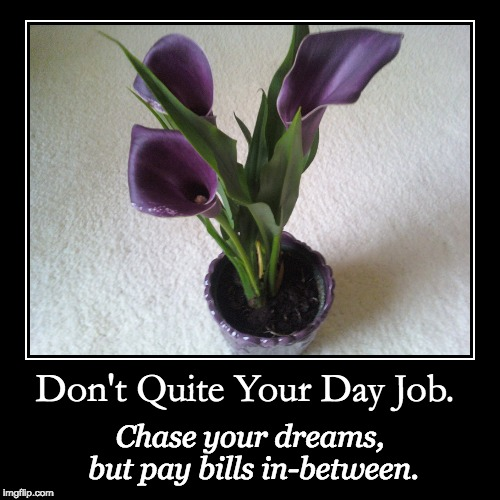 don't quite your day job | Don't Quite Your Day Job. | Chase your dreams, but pay bills in-between. | image tagged in funny,demotivationals | made w/ Imgflip demotivational maker