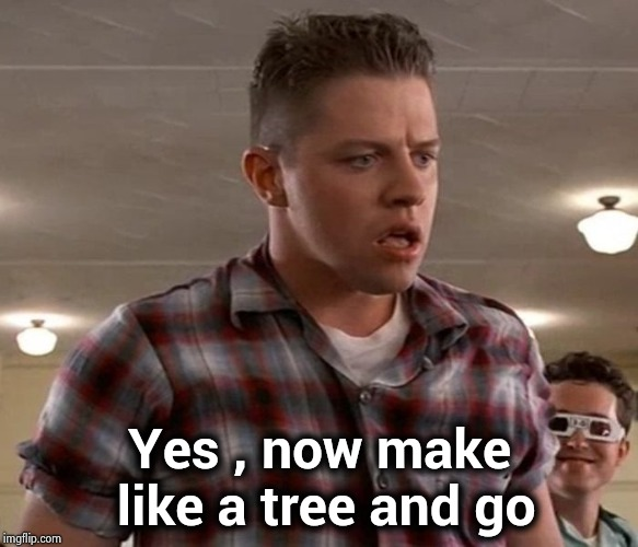 Young Biff | Yes , now make like a tree and go | image tagged in young biff | made w/ Imgflip meme maker