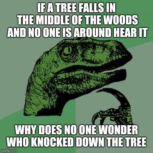 Philosoraptor | IF A TREE FALLS IN THE MIDDLE OF THE WOODS AND NO ONE IS AROUND HEAR IT WHY DOES NO ONE WONDER WHO KNOCKED DOWN THE TREE | image tagged in memes,philosoraptor | made w/ Imgflip meme maker