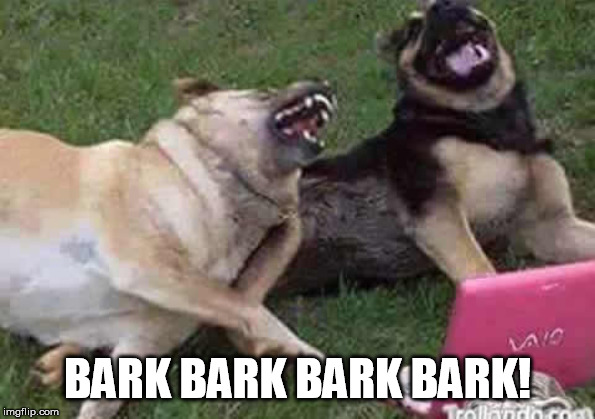 Dogs Laughing | BARK BARK BARK BARK! | image tagged in dogs laughing | made w/ Imgflip meme maker