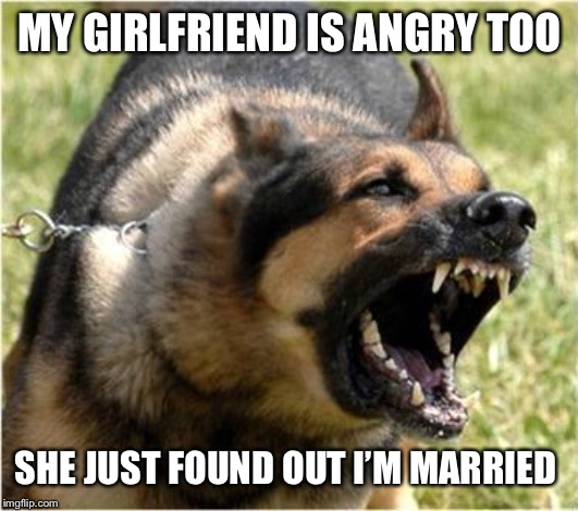 Angry Dog | MY GIRLFRIEND IS ANGRY TOO SHE JUST FOUND OUT I'M MARRIED | image tagged in angry dog | made w/ Imgflip meme maker