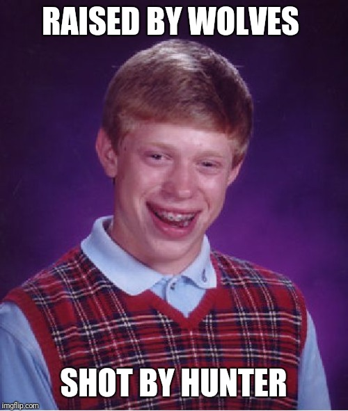Bad Luck Brian Meme | RAISED BY WOLVES SHOT BY HUNTER | image tagged in memes,bad luck brian,wolves,hunter | made w/ Imgflip meme maker