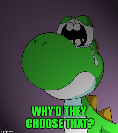 Sad Yoshi | WHY'D THEY CHOOSE THAT? | image tagged in sad yoshi | made w/ Imgflip meme maker