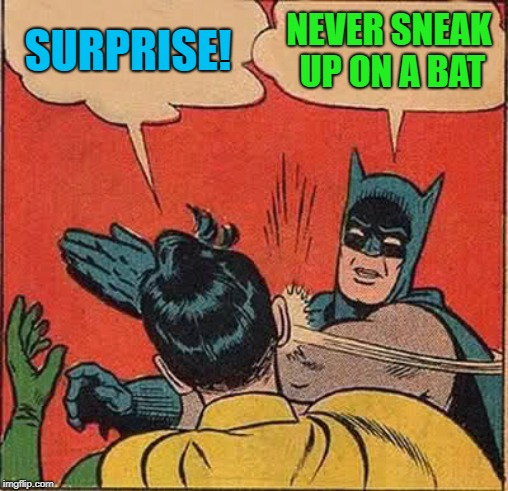 Batman Slapping Robin Meme | SURPRISE! NEVER SNEAK UP ON A BAT | image tagged in memes,batman slapping robin | made w/ Imgflip meme maker