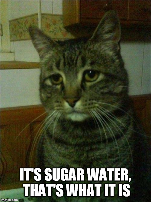 Depressed Cat Meme | IT'S SUGAR WATER, THAT'S WHAT IT IS | image tagged in memes,depressed cat | made w/ Imgflip meme maker