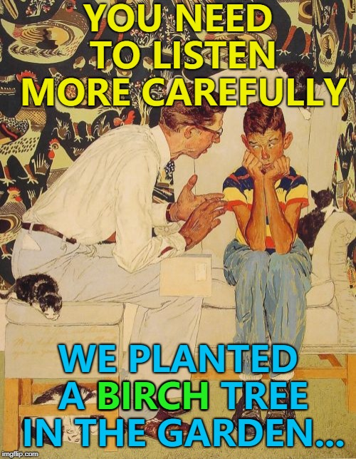 Plant my birch up... :) |  YOU NEED TO LISTEN MORE CAREFULLY; WE PLANTED A BIRCH TREE IN THE GARDEN... BIRCH | image tagged in memes,the probelm is,the problem is,gardening,trees | made w/ Imgflip meme maker