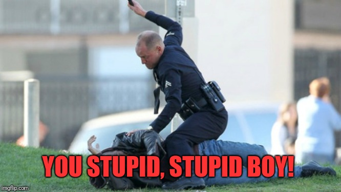 Cop Beating | YOU STUPID, STUPID BOY! | image tagged in cop beating | made w/ Imgflip meme maker