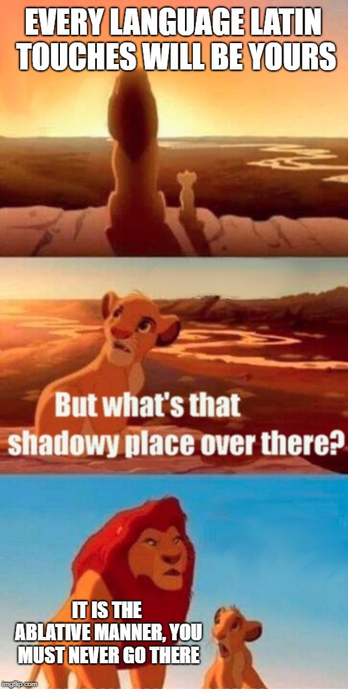 Simba Shadowy Place Meme | EVERY LANGUAGE LATIN TOUCHES WILL BE YOURS IT IS THE ABLATIVE MANNER, YOU MUST NEVER GO THERE | image tagged in memes,simba shadowy place | made w/ Imgflip meme maker