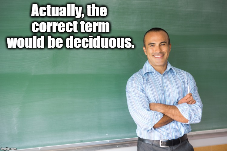 Actually, the correct term would be deciduous. | made w/ Imgflip meme maker
