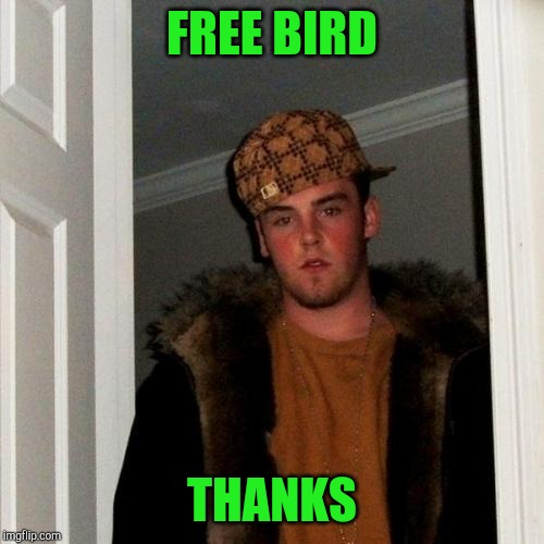 Scumbag Steve | FREE BIRD THANKS | image tagged in memes,scumbag steve | made w/ Imgflip meme maker