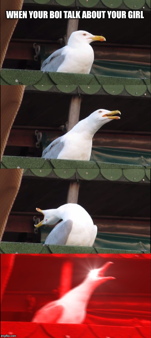 Inhaling Seagull Meme | WHEN YOUR BOI TALK ABOUT YOUR GIRL | image tagged in memes,inhaling seagull | made w/ Imgflip meme maker