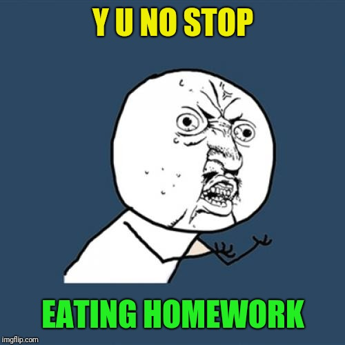 Y U No Meme | Y U NO STOP EATING HOMEWORK | image tagged in memes,y u no | made w/ Imgflip meme maker