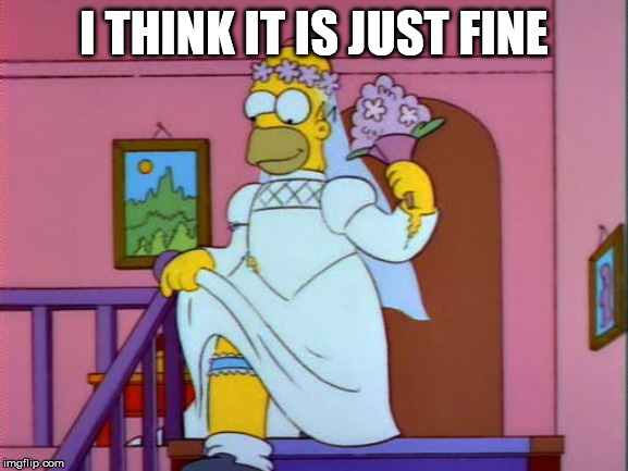 Homer Simpson Wedding Dress | I THINK IT IS JUST FINE | image tagged in homer simpson wedding dress | made w/ Imgflip meme maker