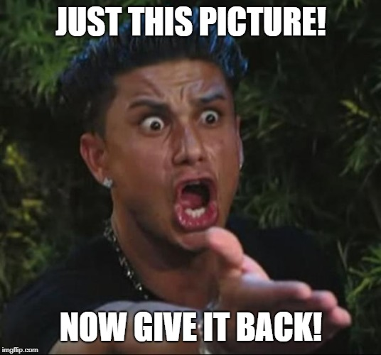 DJ Pauly D Meme | JUST THIS PICTURE! NOW GIVE IT BACK! | image tagged in memes,dj pauly d | made w/ Imgflip meme maker