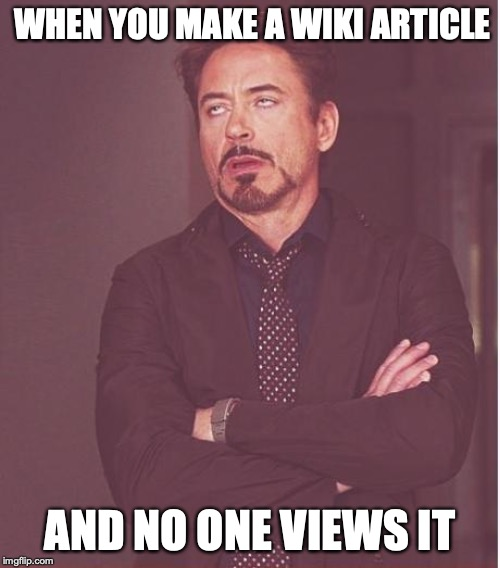 Face You Make Robert Downey Jr Meme | WHEN YOU MAKE A WIKI ARTICLE AND NO ONE VIEWS IT | image tagged in memes,face you make robert downey jr | made w/ Imgflip meme maker