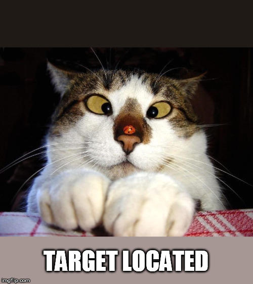 TARGET LOCATED | made w/ Imgflip meme maker