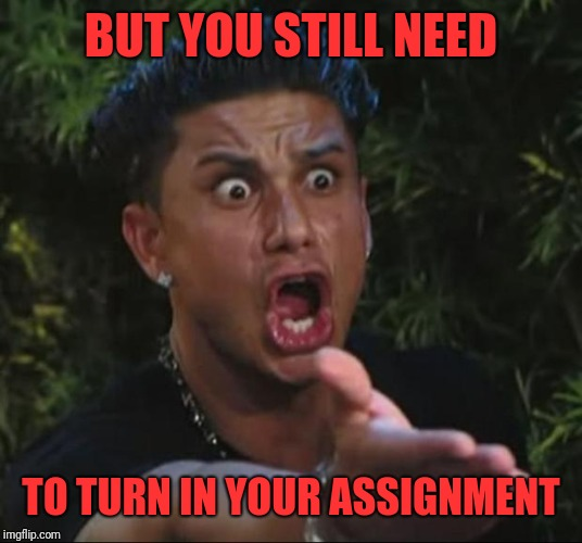 DJ Pauly D Meme | BUT YOU STILL NEED TO TURN IN YOUR ASSIGNMENT | image tagged in memes,dj pauly d | made w/ Imgflip meme maker