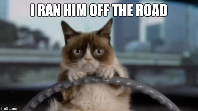 Grumpy cat driving | I RAN HIM OFF THE ROAD | image tagged in grumpy cat driving | made w/ Imgflip meme maker