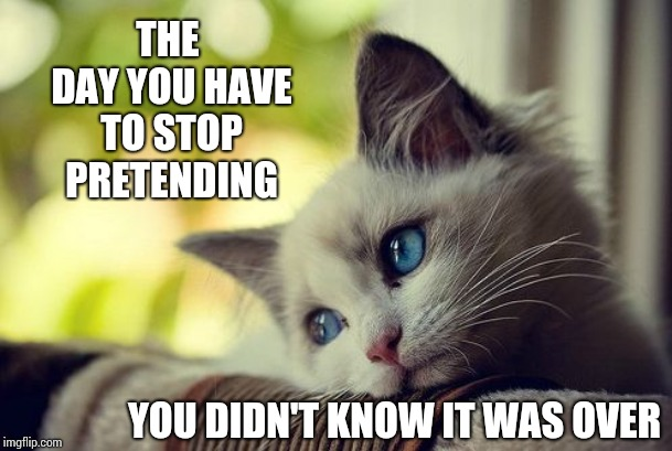 Denial Is A Shield That Doesn't Really Protect Us.  It Just Prolongs The Inevitable. The Point Is There Is No Point | THE DAY YOU HAVE TO STOP PRETENDING YOU DIDN'T KNOW IT WAS OVER | image tagged in memes,first world problems cat,sad,so it begins,it's over,neverending story | made w/ Imgflip meme maker
