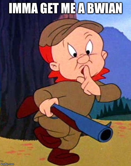 Elmer Fudd | IMMA GET ME A BWIAN | image tagged in elmer fudd | made w/ Imgflip meme maker