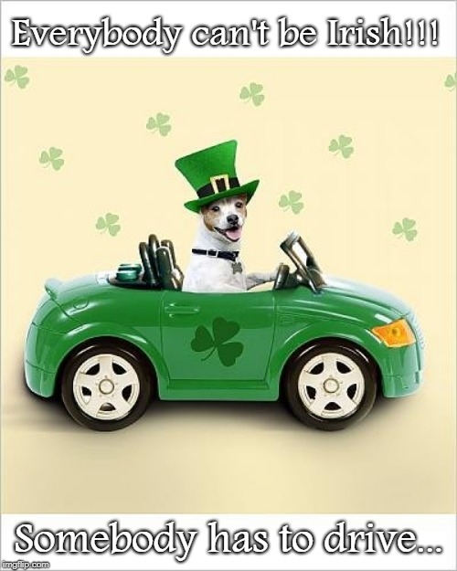 Good point... | Everybody can't be Irish!!! Somebody has to drive... | image tagged in irish,drive,can't be | made w/ Imgflip meme maker