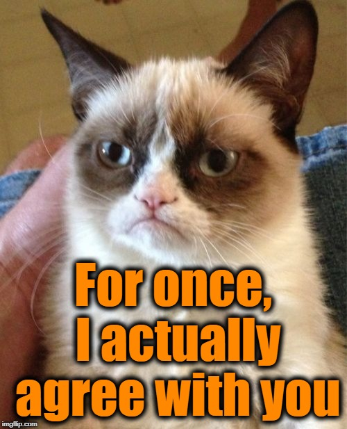 Grumpy Cat Meme | For once, I actually agree with you | image tagged in memes,grumpy cat | made w/ Imgflip meme maker