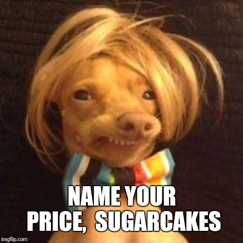 phteven dog | NAME YOUR PRICE,  SUGARCAKES | image tagged in phteven dog | made w/ Imgflip meme maker