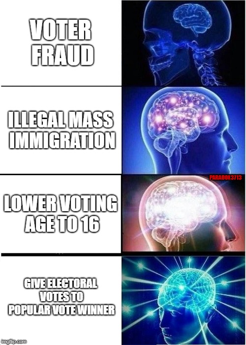 How Democrats Plan to Beat President Trump | VOTER FRAUD ILLEGAL MASS IMMIGRATION LOWER VOTING AGE TO 16 GIVE ELECTORAL VOTES TO POPULAR VOTE WINNER PARADOX3713 | image tagged in memes,expanding brain,democrats,election 2020,corruption,civil war | made w/ Imgflip meme maker