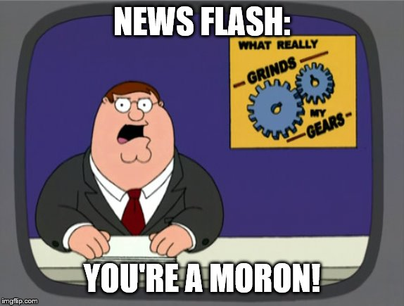 News Flash: You're A Moron! | NEWS FLASH: YOU'RE A MORON! | image tagged in memes,peter griffin news,news flash,news flash you're a moron | made w/ Imgflip meme maker