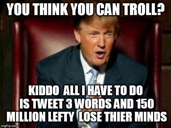 Donald Trump | YOU THINK YOU CAN TROLL? KIDDO  ALL I HAVE TO DO IS TWEET 3 WORDS AND 150 MILLION LEFTY  LOSE THIER MINDS | image tagged in donald trump | made w/ Imgflip meme maker