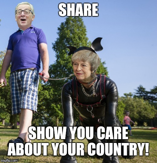 SHARE SHOW YOU CARE ABOUT YOUR COUNTRY! | image tagged in theresa may | made w/ Imgflip meme maker