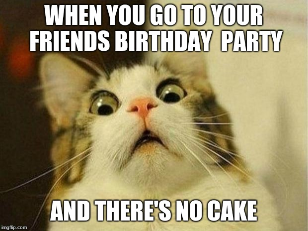 Scared Cat |  WHEN YOU GO TO YOUR FRIENDS BIRTHDAY  PARTY; AND THERE'S NO CAKE | image tagged in memes,scared cat | made w/ Imgflip meme maker