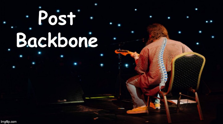 Post Backbone | image tagged in music,puns | made w/ Imgflip meme maker