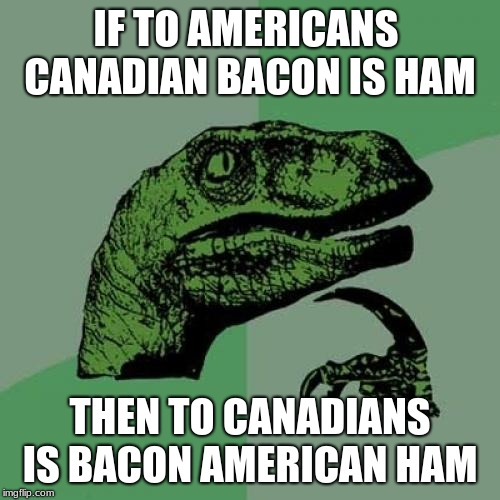 Philosoraptor |  IF TO AMERICANS  CANADIAN BACON IS HAM; THEN TO CANADIANS IS BACON AMERICAN HAM | image tagged in memes,philosoraptor,bacon meme,canada,america,america vs canada | made w/ Imgflip meme maker