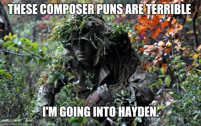 camouflage | THESE COMPOSER PUNS ARE TERRIBLE I'M GOING INTO HAYDEN. | image tagged in camouflage | made w/ Imgflip meme maker