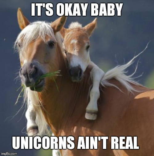 Foal Of Mine | IT'S OKAY BABY UNICORNS AIN'T REAL | image tagged in memes,foal of mine | made w/ Imgflip meme maker
