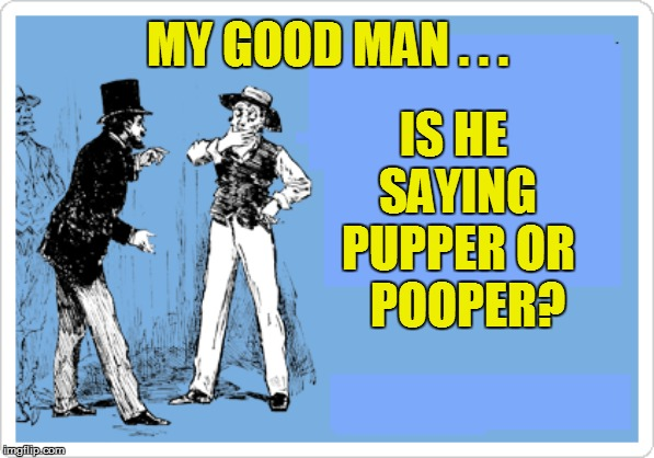 IS HE SAYING PUPPER OR   POOPER? MY GOOD MAN . . . | made w/ Imgflip meme maker