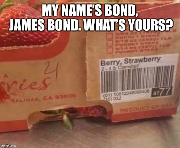 MY NAME'S BOND, JAMES BOND. WHAT'S YOURS? | image tagged in james bond,strawberry,memes | made w/ Imgflip meme maker