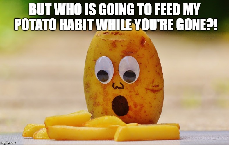 Potato Crime Scence | BUT WHO IS GOING TO FEED MY POTATO HABIT WHILE YOU'RE GONE?! | image tagged in potato crime scence | made w/ Imgflip meme maker