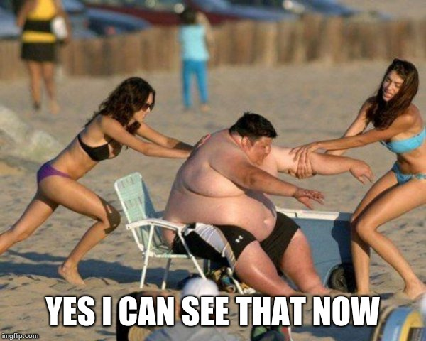 Women Helping Fat Guy | YES I CAN SEE THAT NOW | image tagged in women helping fat guy | made w/ Imgflip meme maker