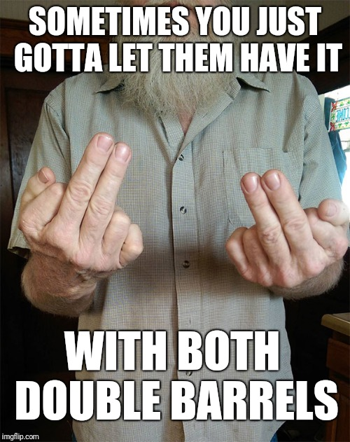 Sometimes you just got to let them have it with both double barrels | SOMETIMES YOU JUST GOTTA LET THEM HAVE IT WITH BOTH DOUBLE BARRELS | image tagged in both double barrels,bird,middle finger,finger | made w/ Imgflip meme maker