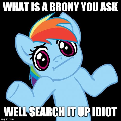 Pony Shrugs | WHAT IS A BRONY YOU ASK WELL SEARCH IT UP IDIOT | image tagged in memes,pony shrugs | made w/ Imgflip meme maker