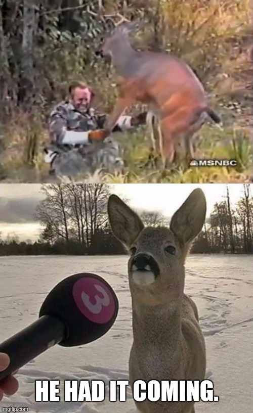 He Killed Ma Brother | HE HAD IT COMING. | image tagged in payback,deer,kills,man,hunting | made w/ Imgflip meme maker