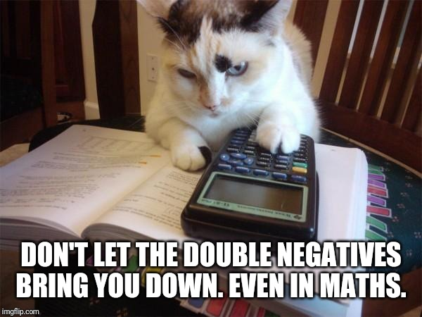 Math cat | DON'T LET THE DOUBLE NEGATIVES BRING YOU DOWN. EVEN IN MATHS. | image tagged in math cat | made w/ Imgflip meme maker