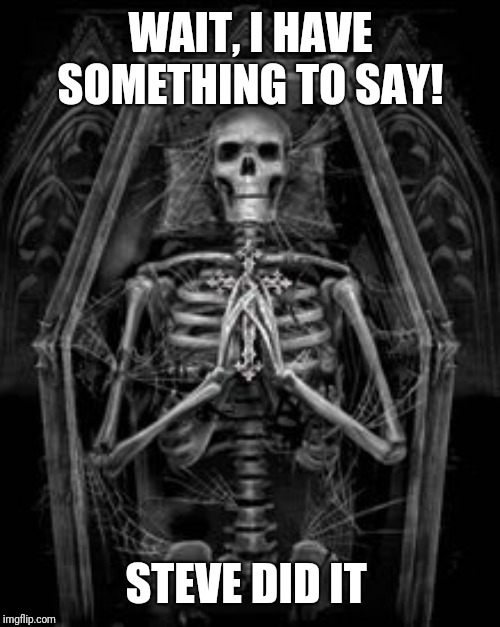 Skeleton Casket | WAIT, I HAVE SOMETHING TO SAY! STEVE DID IT | image tagged in skeleton casket | made w/ Imgflip meme maker