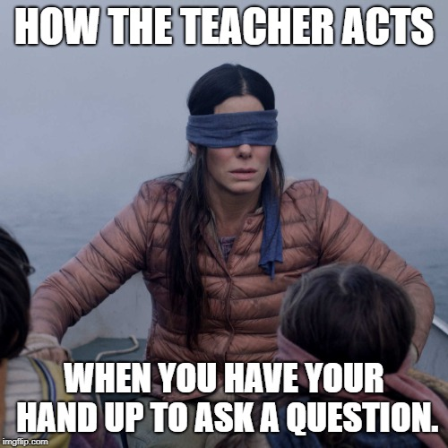 Bird Box teacher | HOW THE TEACHER ACTS WHEN YOU HAVE YOUR HAND UP TO ASK A QUESTION. | image tagged in memes,bird box,teacher,school,raising your hand | made w/ Imgflip meme maker