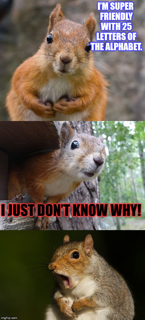 Grammar puns in the woods... | I'M SUPER FRIENDLY WITH 25 LETTERS OF THE ALPHABET. I JUST DON'T KNOW WHY! | image tagged in bad pun squirrel,grammar,memes,funny,alphabet | made w/ Imgflip meme maker