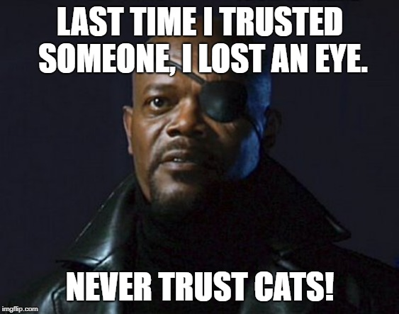Nick Fury | LAST TIME I TRUSTED SOMEONE, I LOST AN EYE. NEVER TRUST CATS! | image tagged in nick fury | made w/ Imgflip meme maker